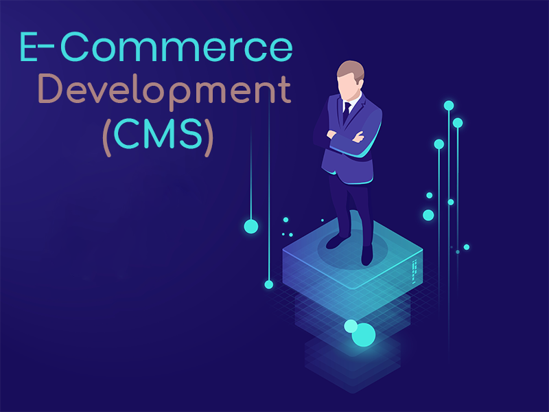 CMS e-commerce Web Development